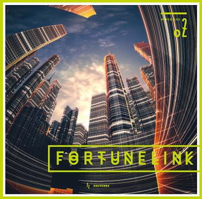 [HTFCD-L02] FORTUNELINK02